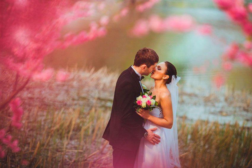Кому горько на свадьбе
