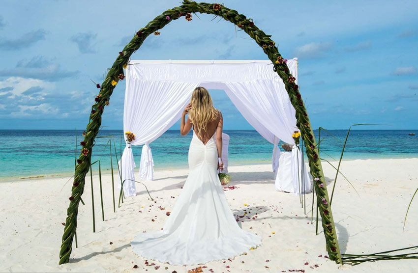 Медовый месяц