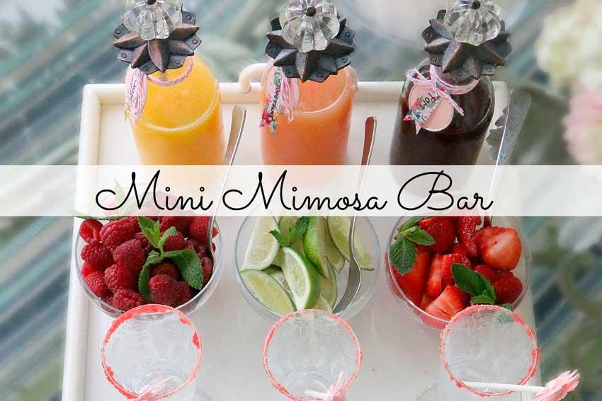 Мимоза бар
